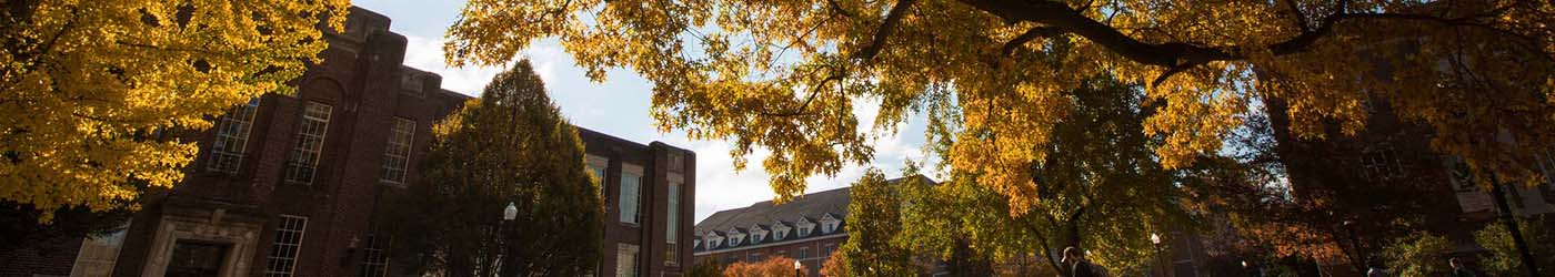Lake Erie College of Osteopathic Medicine | LECOM Acceptance