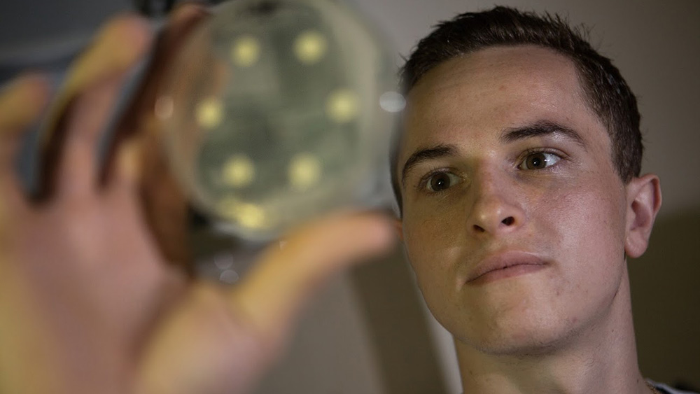 A student looks into a Petri dish.