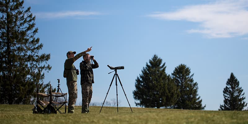 Cal U students conduct hawk research.