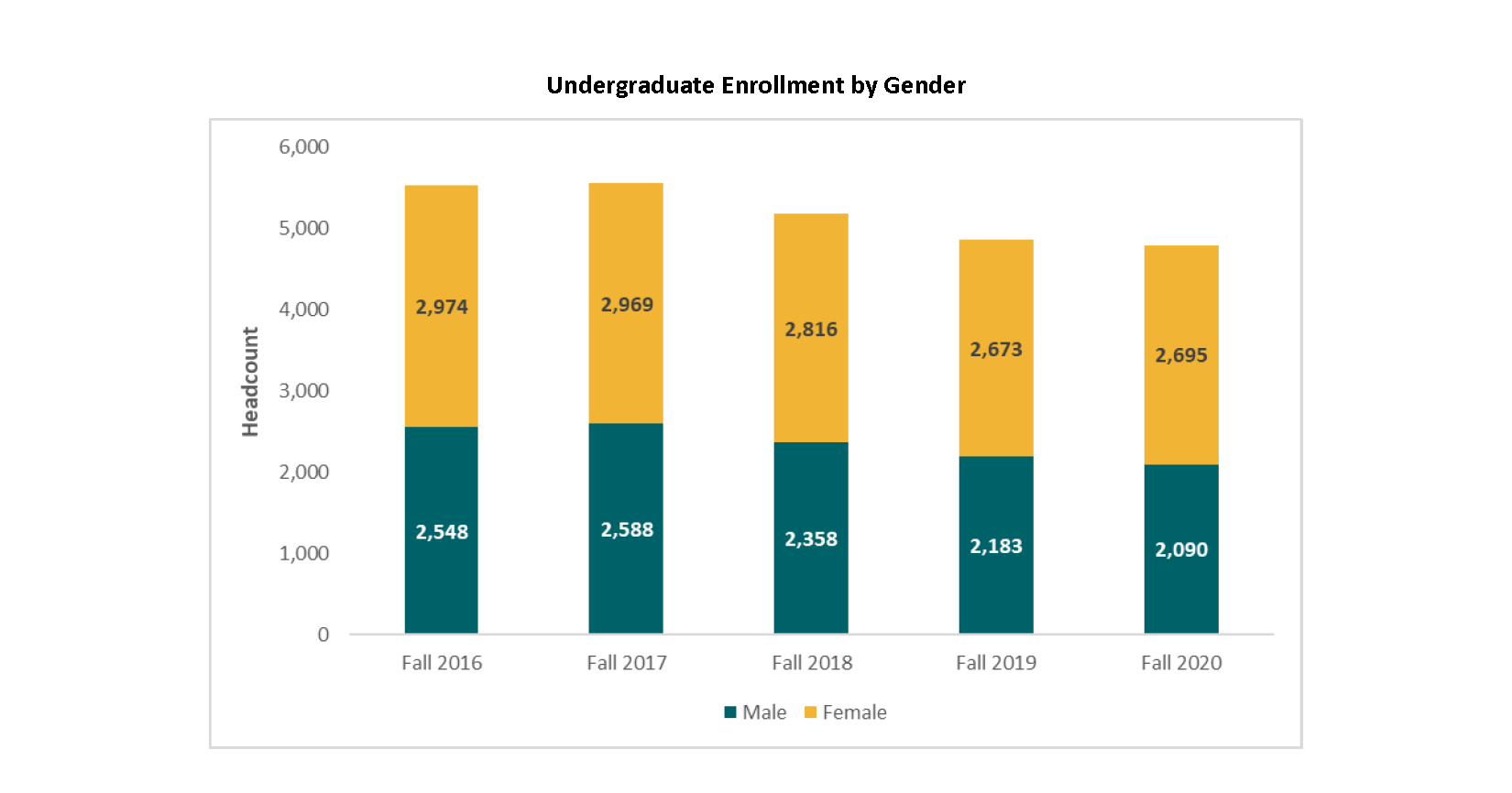 Undergraduate Enrollment by Gender